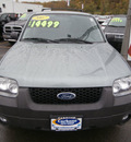 ford escape 2007 green suv xlt gasoline 4 cylinders front wheel drive automatic with overdrive 13502