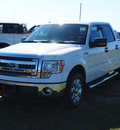 ford f 150 2013 white xlt 8 cylinders automatic with overdrive 77864